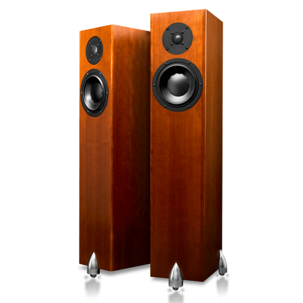 Totem Acoustic Forest Signature 6